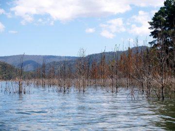 Башкирию ожидает сильный паводок