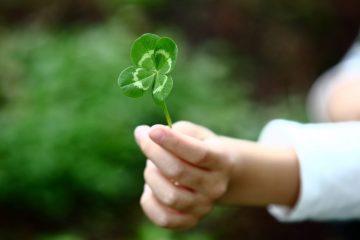 Пять знаков зодиака ожидает удача до конца года