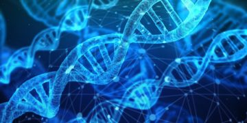 У коронавируса SARS-CoV-2 обнаружено более 12 тыс. мутаций
