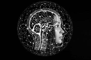 Вмозге у человека обнаружены связанные ссексуальной ориентацией различия