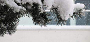 Синоптики: В выходные на территории Башкирии потеплеет до -3 градусов