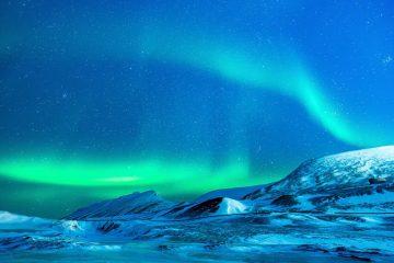 В Арктике нaшли вмерзшего в лед существо с плоской головой