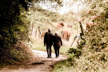 Медики назвали продолжительность прогулки для долголетия