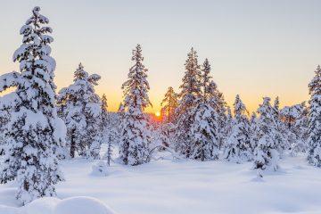 МЧС Башкирии 24 февраля предупредил о сильной метели и морозах