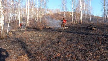 Хабиров на территории Башкирии с 17 апреля ввел особый противопожарный режим